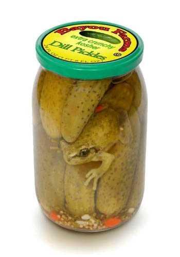 Frog pickle